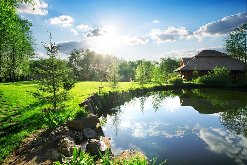 Ako sa starať o záhradné jazierko