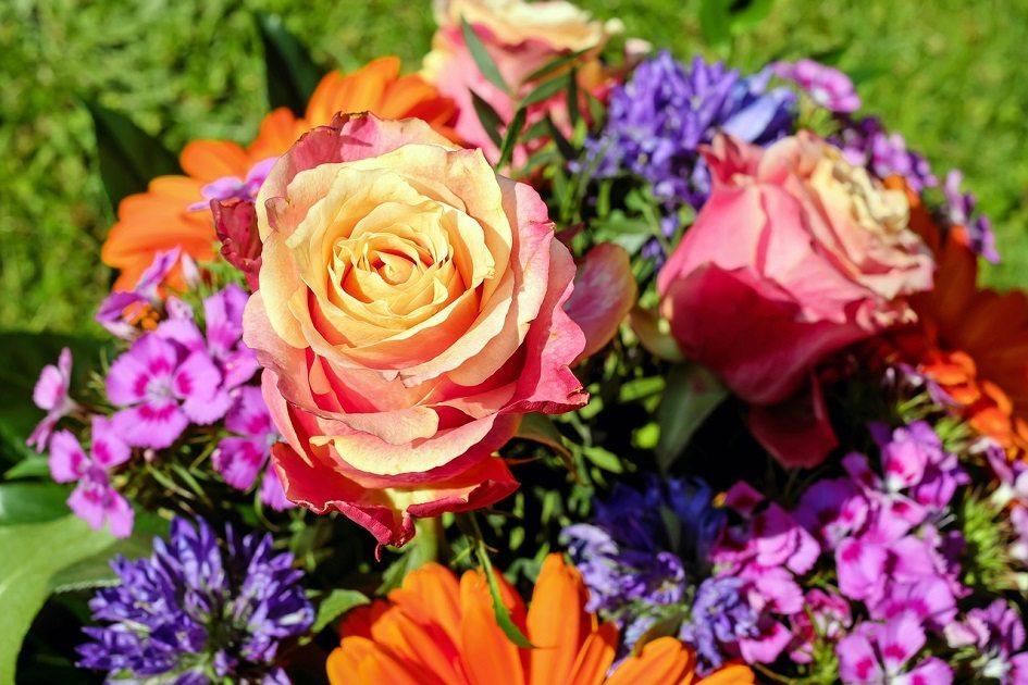 Milujete kvety? Viete, čo všetko vám o sebe prezrádzajú?