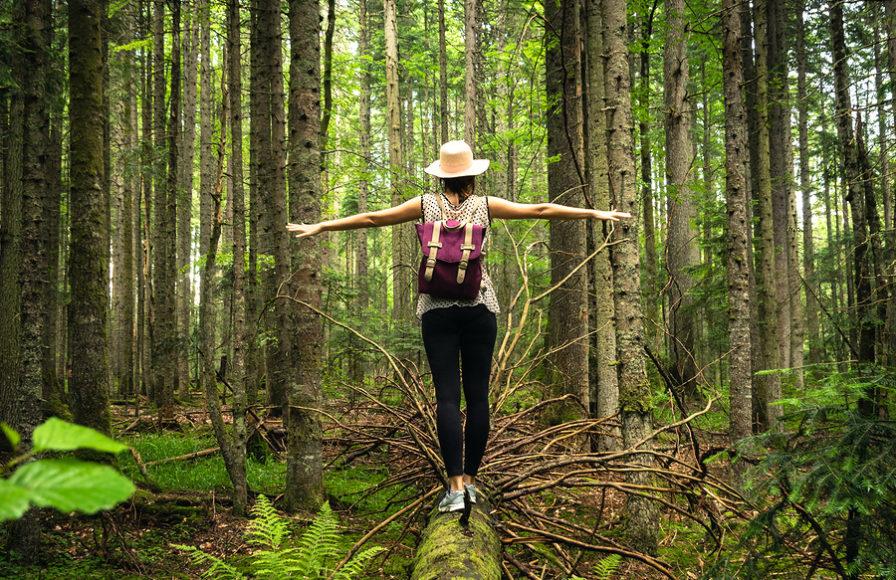 Prečo by ste mali tráviť viac času v prírode?